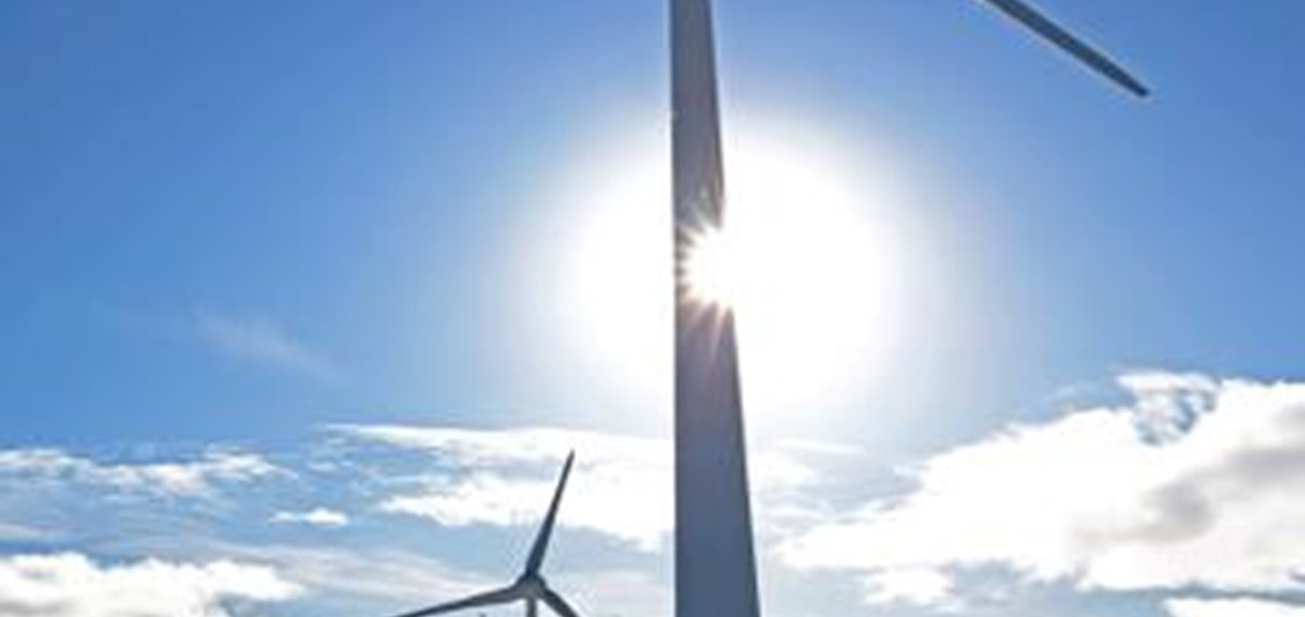 Wind and Solar the Highest Priorities for Green Strategy