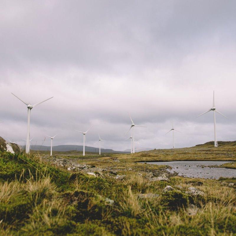 SEV kært avgerðina hjá Umhvørvisstovuni at lýsa nýtt vindorkuútboð í Hoyvíkshaganum